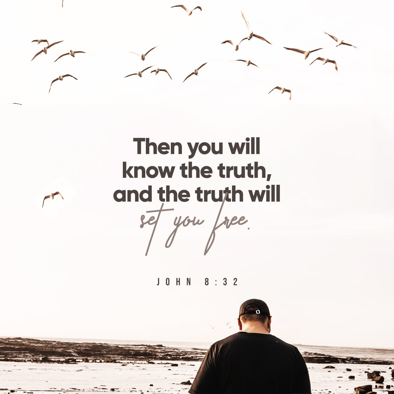 John 8 32 scripture image